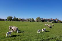 Paard van Marken, Marken, The Netherlands