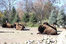 Brookfield Zoo, Brookfield, United States