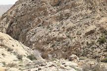 Bamou National Park, Shiraz, Iran