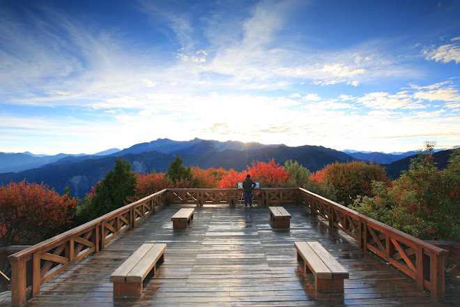 Visit Alishan National Forest Recreation Area on your trip