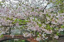 Church House Gardens, Bromley, United Kingdom