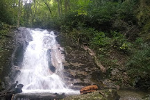 Rock Creek Park, Erwin, United States