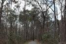 Green Creek Trail