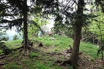 Aussichtsturm Naturpark Hohe Wand, Maiersdorf, Austria