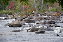 Oxtongue River-Ragged Falls Provincial Park, Dwight, Canada
