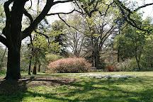 Coker Arboretum, Chapel Hill, United States