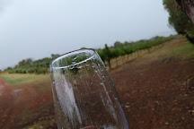 Ugly Duckling Wines, West Swan, Australia