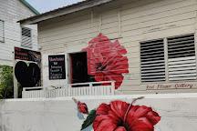Red Flower Gallery, Caye Caulker, Belize