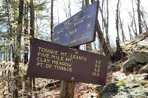 Tongue Mountain Range Trails, Bolton Landing, United States