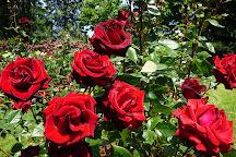 Owen Rose Garden, Eugene, United States