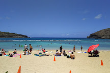 Hawaiian Ocean Promotions - Day Tours, Honolulu, United States