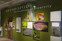 The Harvard Museum of Natural History, Cambridge, United States