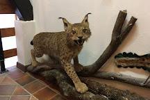 Hunting Collection and Dormouse Museum, Stari Trg pri Lozu, Slovenia
