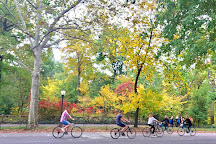 Central Park Tours & Bike Rentals, New York City, United States