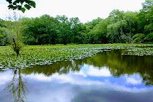 Sandy Creek Nature Center, Athens, United States