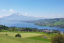 Seilpark Rigi, Kuessnacht am Rigi, Switzerland