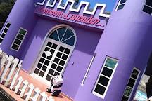 Cameron Lavender, Cameron Highlands, Malaysia