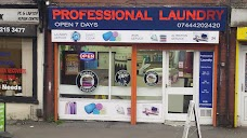 Professional Laundry & Dry Cleaners
