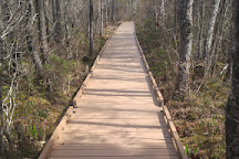 Orono Bog Boardwalk, Orono, United States