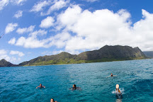 Gone Surfing Hawaii, Honolulu, United States