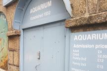 Fowey Aquarium, Fowey, United Kingdom