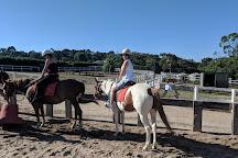 Horseback Winery Tours, Main Ridge, Australia