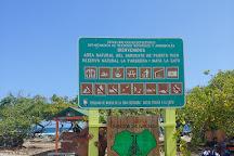 Isla Mata La Gata, La Parguera, Puerto Rico