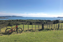 Waitangi Mountain Bike Park, Waitangi, New Zealand