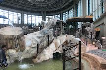Tsurumi Ryokuchi Pool, Osaka, Japan
