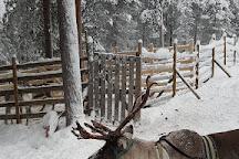 Salla Reindeer Park, Salla, Finland