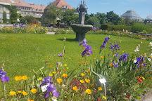 Botanischer Garten Muenchen-Nymphenburg, Munich, Germany