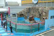 Ise Meotoiwa Interactive Aquarium (Ise Sea Paradise), Ise, Japan