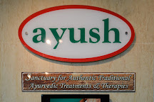 Ayush Ayurvedic Pte Ltd, Singapore, Singapore
