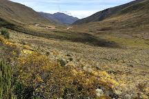 Sierra Nevada, Merida, Venezuela