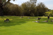 Pambula Merimbula Golf Club, Merimbula, Australia