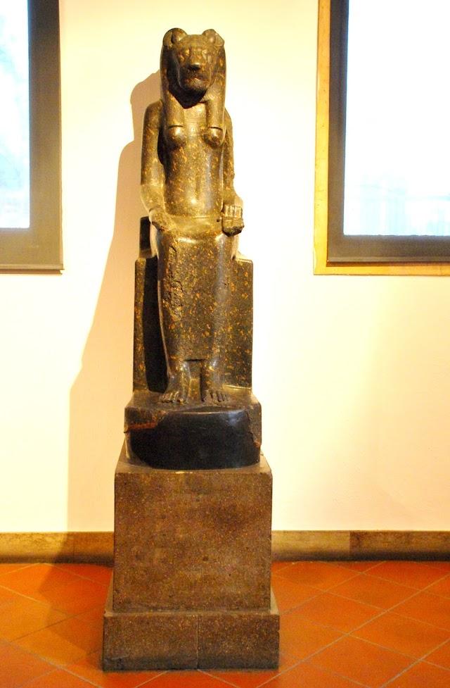 Museo Bottacin