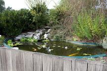 Les jardins aquatiques, Saint-Didier-sur-Chalaronne, France