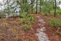 Lake Waccamaw State Park, North Carolina, United States