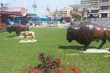 Canalside, Buffalo, United States