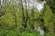 Prospect Park, Reading, United Kingdom