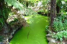 Alfred Nicholas Memorial Gardens, Sherbrooke, Australia