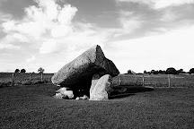 Brownshill Dolmen, Carlow, Ireland
