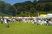 Nishiyama Park, Sabae, Japan