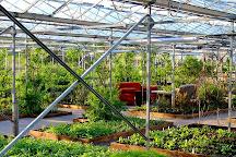 Secret Herb Garden, Edinburgh, United Kingdom