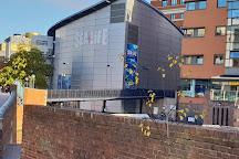 National SEA LIFE Centre Birmingham, Birmingham, United Kingdom