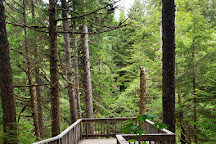 Tongass National Forest, Ketchikan, United States