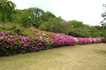 Jagatani Park, Tamana, Japan