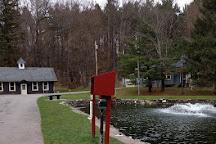 Riedman Fish Hatchery, Pittsford, United States