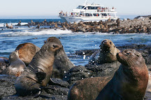 Wildlife Coast Cruises, Cowes, Australia