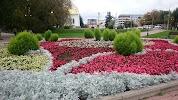 Петровский, площадь Революции на фото Иванова